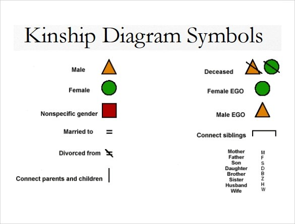 Kinship Diagram Maker Periodic Diagrams Science Great Ideas
