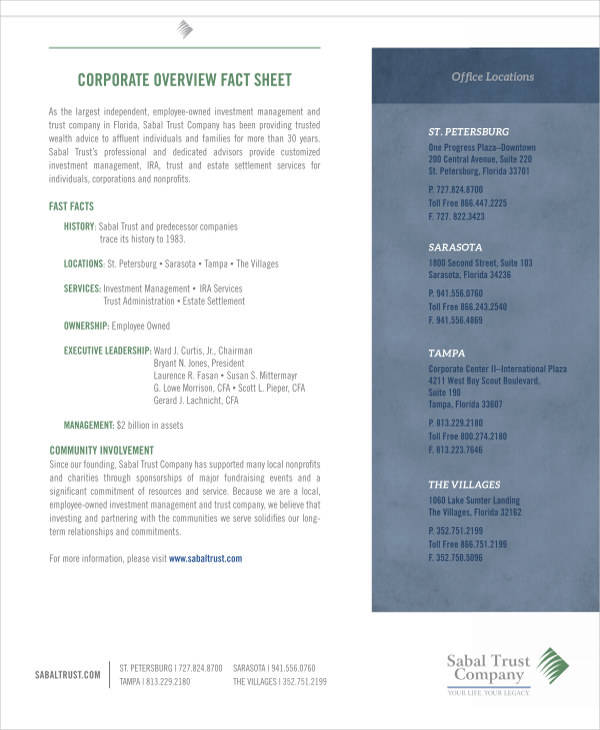 45 Fact Sheet Templates   Sample Templates Company Overview