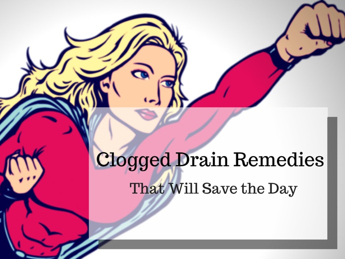 clogged drain expert advice home