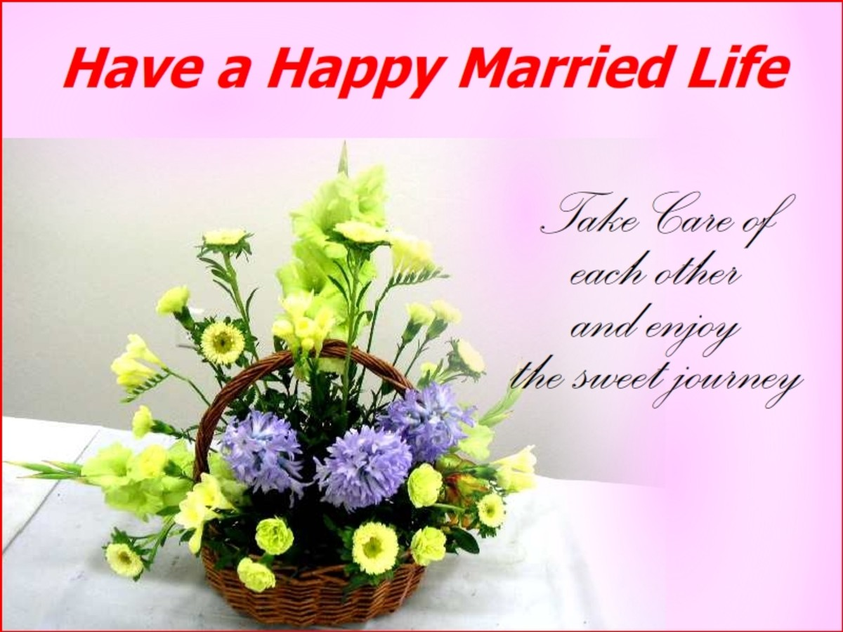 Wedding Wishes Messages And Quotes Holidappy Celebrations