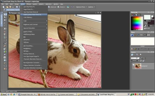 How to Use Paint Shop Pro to Make Coloring Book Pages With Photos