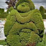 Topiary How To Make It And Use The Frames Hubpages