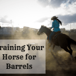 Horse Training Tips How To Train For Barrel Racing With Video Pethelpful By Fellow Animal Lovers And Experts