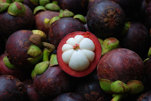 Image result for durian and mangosteen