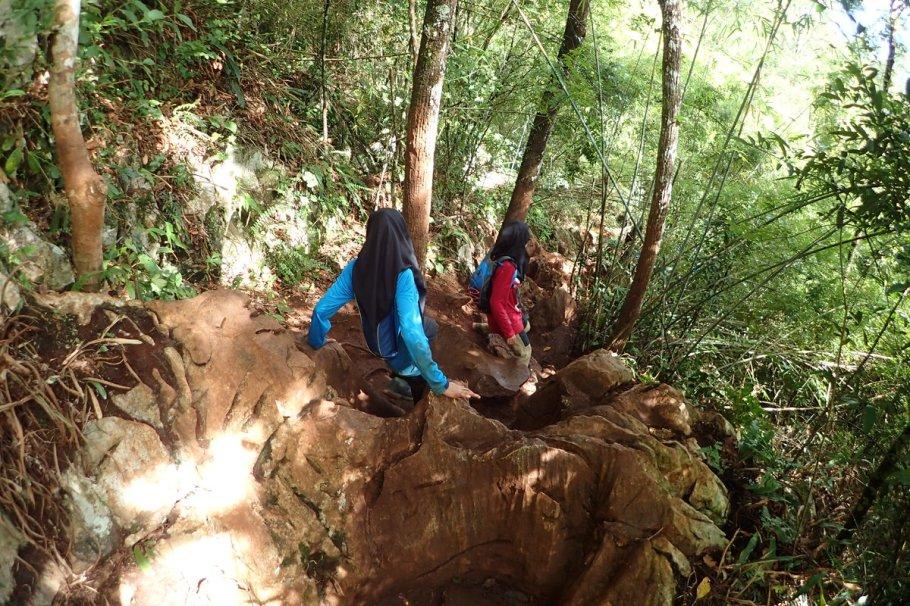 Image result for solat dalam hutan