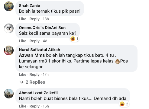 Image from Majlis Daerah Kuala Selangor (Facebook)