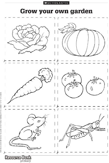 Design Your Own Garden Ks2