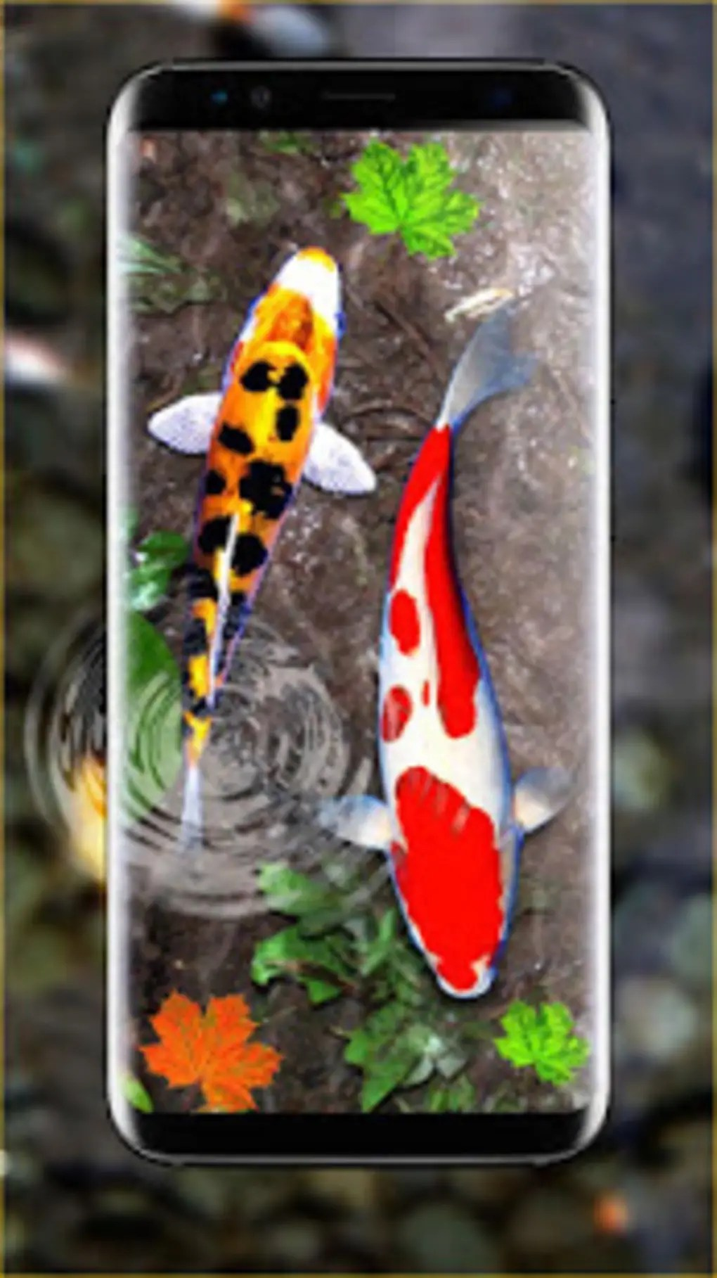 3d koi fish wallpaper hd 3d fish live wallpapers for android - download