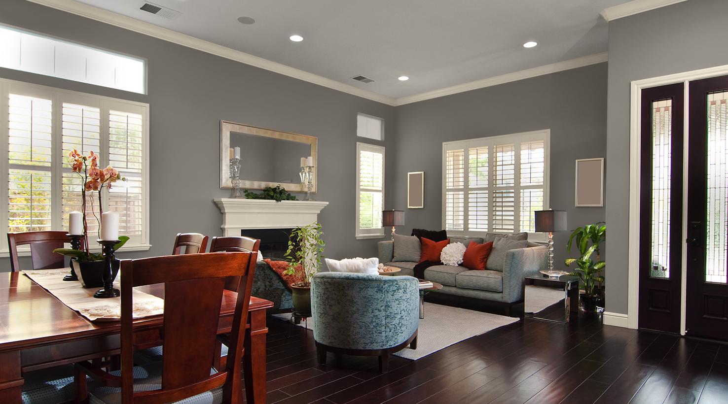 Paint Color Ideas Living Rooms