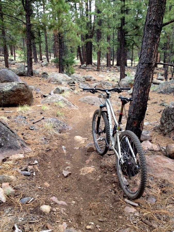 Image Result For Flagstaff Mountain Biking