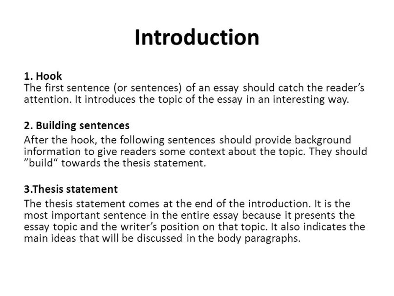 Immigration essay introduction