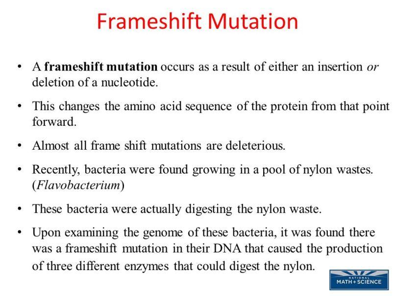 Frameshift Mutations Occur When | Allframes5.org
