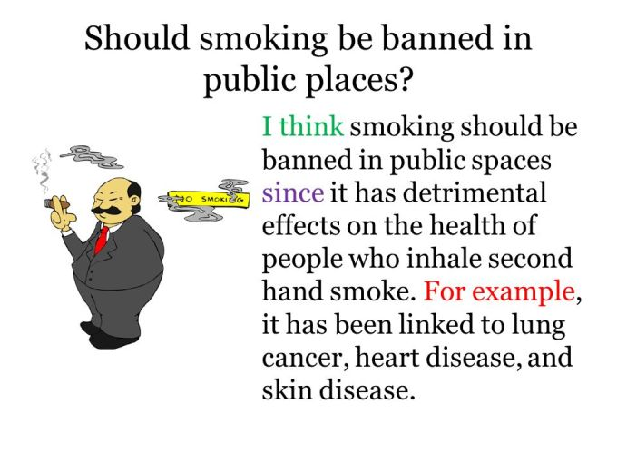 Essay On Pollution Control Argumentative Essay About Smoking Topic Should Smoking Be Banned In Public  Places Long Essay Examples also Sample Of Descriptive Essay About A Place Persuasive Essay About Smoking Should Be Banned  Textpoemsorg Essay On Evolution Of Man