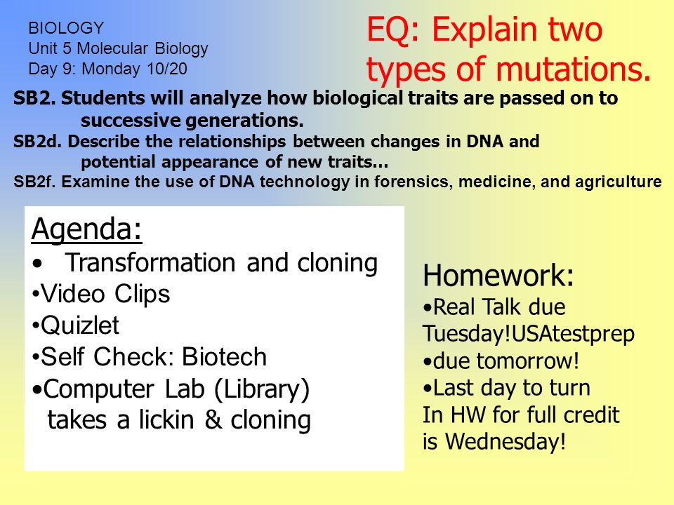 Homeostasis Quizlet Biology. Mr Pereira S Bio October With ...