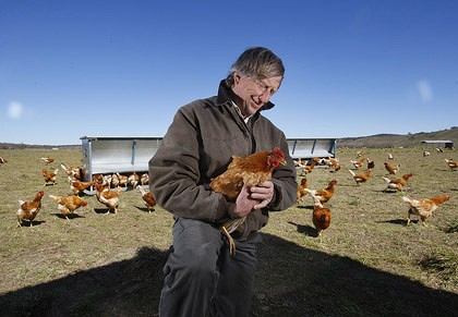 Home on the range ... Tony Coote, on his farm near Canberra  yesterday, says people buying accredited free-range eggs may not be  getting what they pay for.
