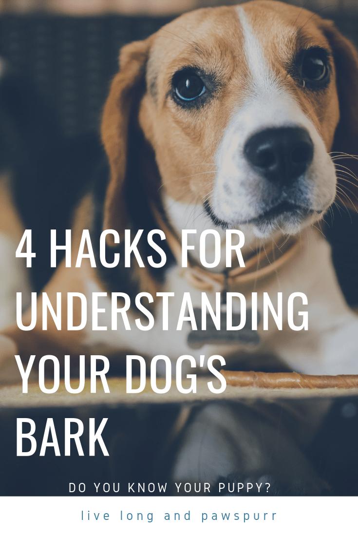 "Understanding Your Dog's Bark"" class="