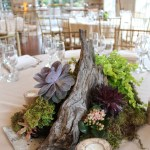 Succulent Wedding Decor At The Stone House At Stirling Ridge Warren New Jersey Event Decor Nj