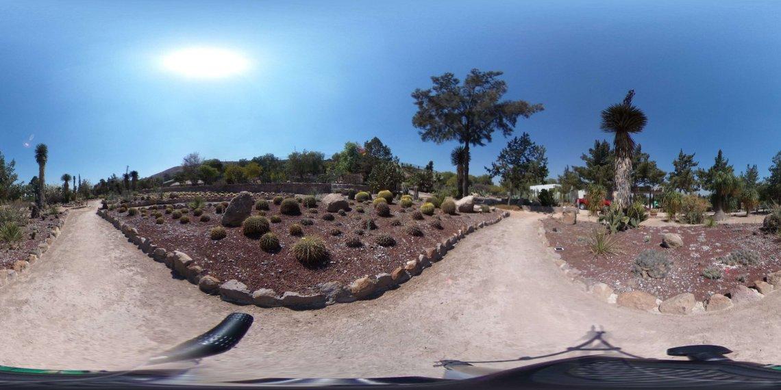 Jardín botánico _El Izotal_ 2.jpg