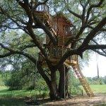 Treehouse Experts Llc
