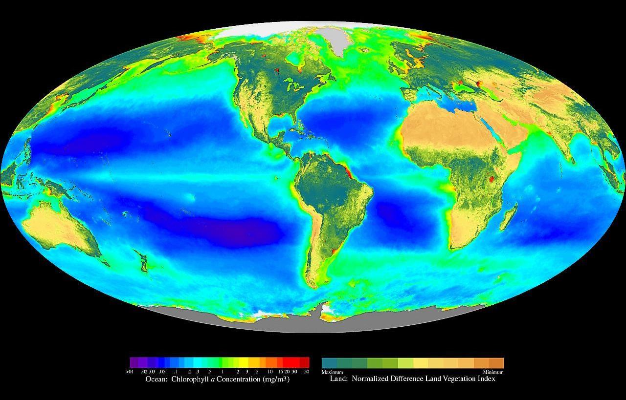 The abundant Biosphere