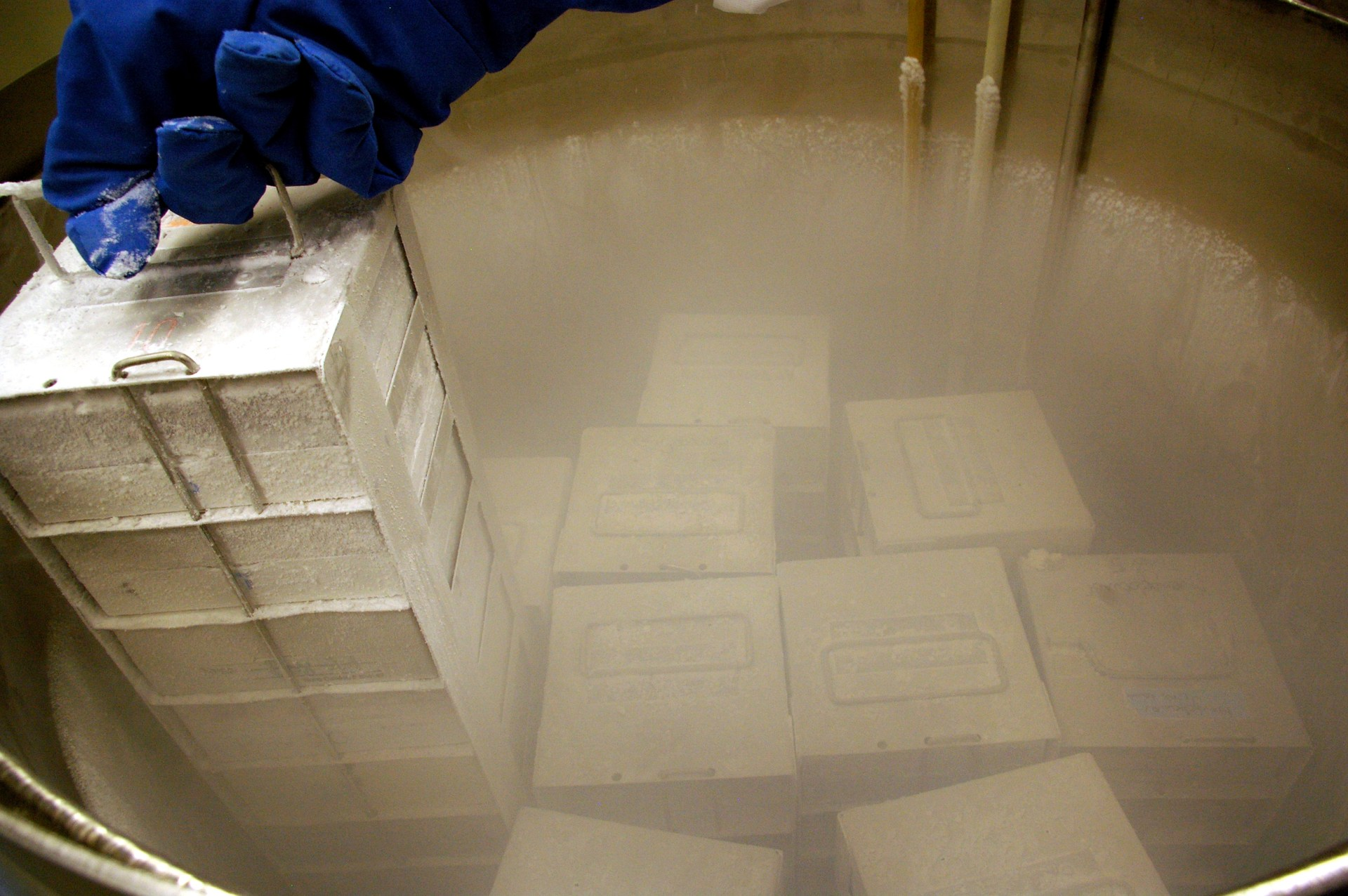 Liquid nitrogen cryopreservation of cells is commonplace