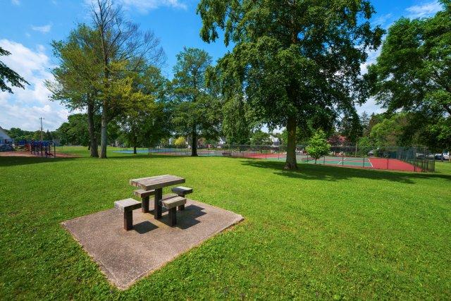 7 City of Auburn y-field.JPG