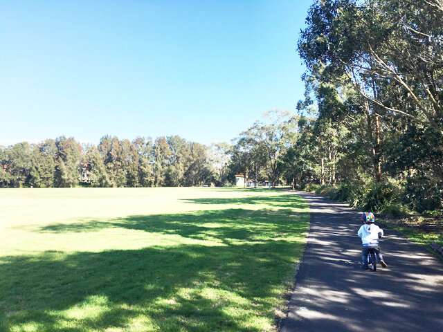 Passmore Reserve Manly Vale - Photo Credit: @busycitykids