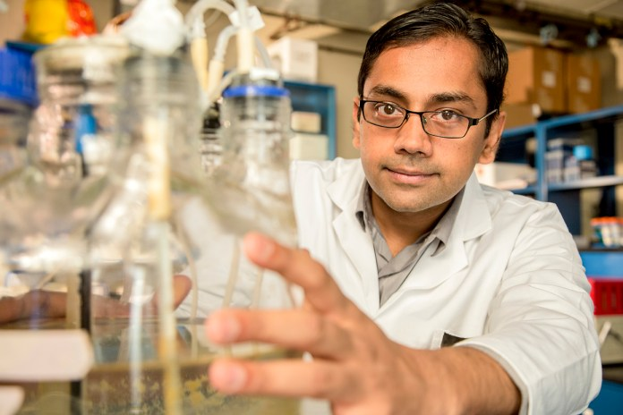 Former UConn student Kartik Chandran, currently a Columbia University professor who earned his Ph.D. at UConn in 1999, won a MacArthur Foundation grant for his innovative work in wastewater treatment. (Courtesy/John D. and Katherine T. MacArthur Foundation)
