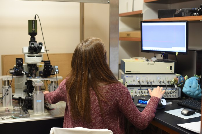 """""""When people think about the body, they think of something going wrong in one place, but not how that affects the whole system,"""" said Joannam Hawryluk, a graduate student in the lab.This lab takes a look at ion channels to explain the development of seizures and epilepsy.(Zhelun Lang/Daily Campus)"""