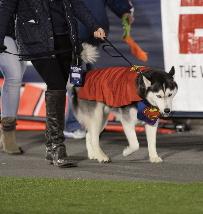 Jonathan often attends football games along with the costume mascot Jonathan. Ashley Maher/Daily Campus