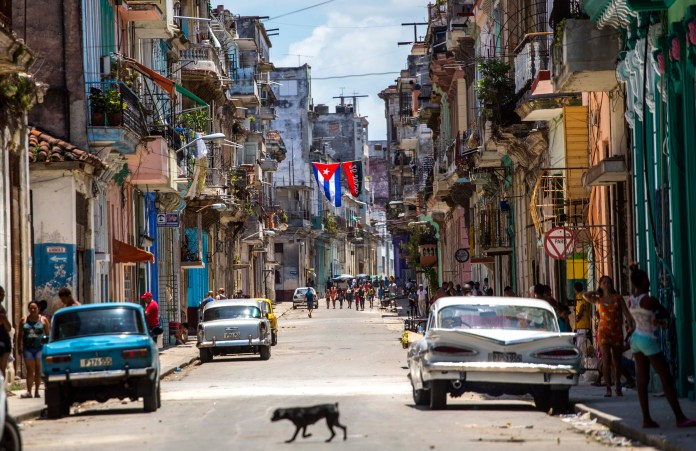 A dog crosses a street adorned with a Cuban flag and a 26-July movement flag in downtown Havana, Cuba, Tuesday, July 26, 2016.(AP Photo/Desmond Boylan)