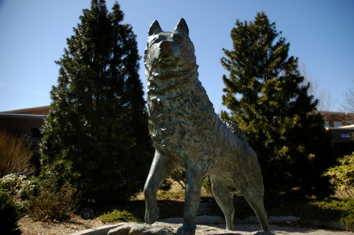 This is UConn's seventh year in the Top 25 and highest ranking to date. (File photo/The Daily Campus)