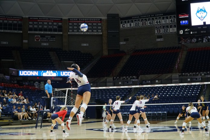 Volleyball will be busy hosting games this weekend (Eric Wang/The Daily Campus)