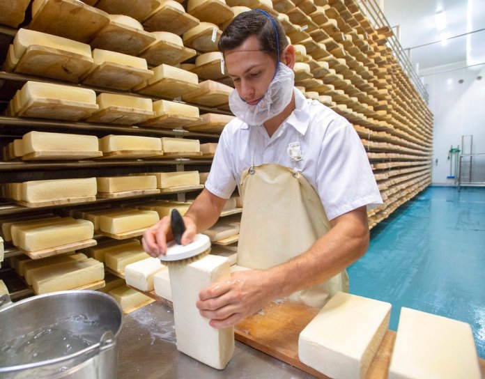 Raphael Kaiser washes off the cheese with salt water at the production facility of Fromagerie Fritz Kaiser in Noyan, Que., Thursday, Oct. 11, 2018. (Ryan Remiorz/The Canadian Press via AP)