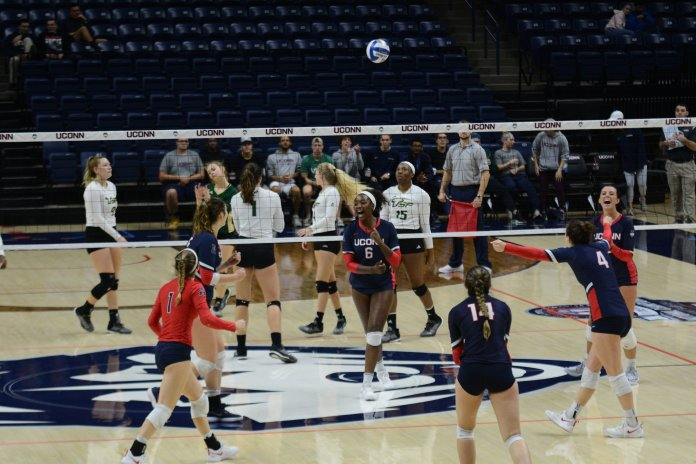 The UConn Huskies Volleyball team celebrates their win against USF at Gamble Pavilion on Saturday, November 3, 2018. (Judah Shingleton/ The Daily Campus)