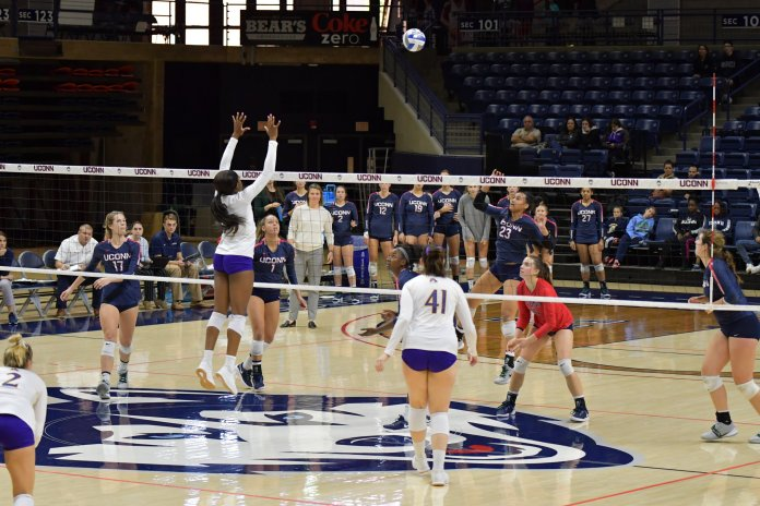 Despite their best efforts, UConn Volleyball loses to ECU in Gampel Pavilion Sunday afternoon. The game had some good volleys, but ECU outplayed the Huskies and won without giving up a single set.  Photo by Kevin Lindstrom/The Daily Campus