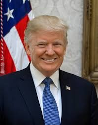 Trump is facing an impeachment trial in the senate.   Official White House Photo by Shealah Craighead