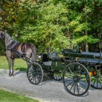 Restorations Other Projects Pioneer Coach