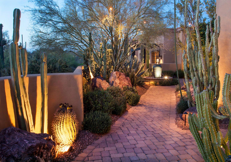 let there be light desert landscape lighting ideas designs