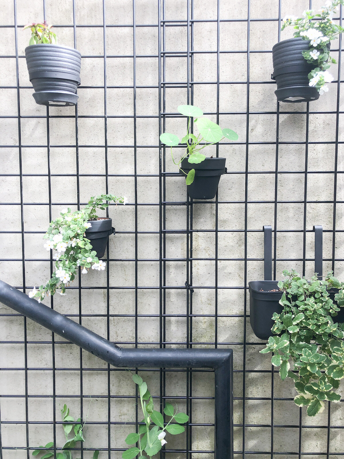 diy outdoor grid planter wall for a