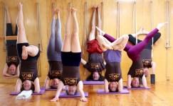 Iyengar Yoga Champaign-Urbana