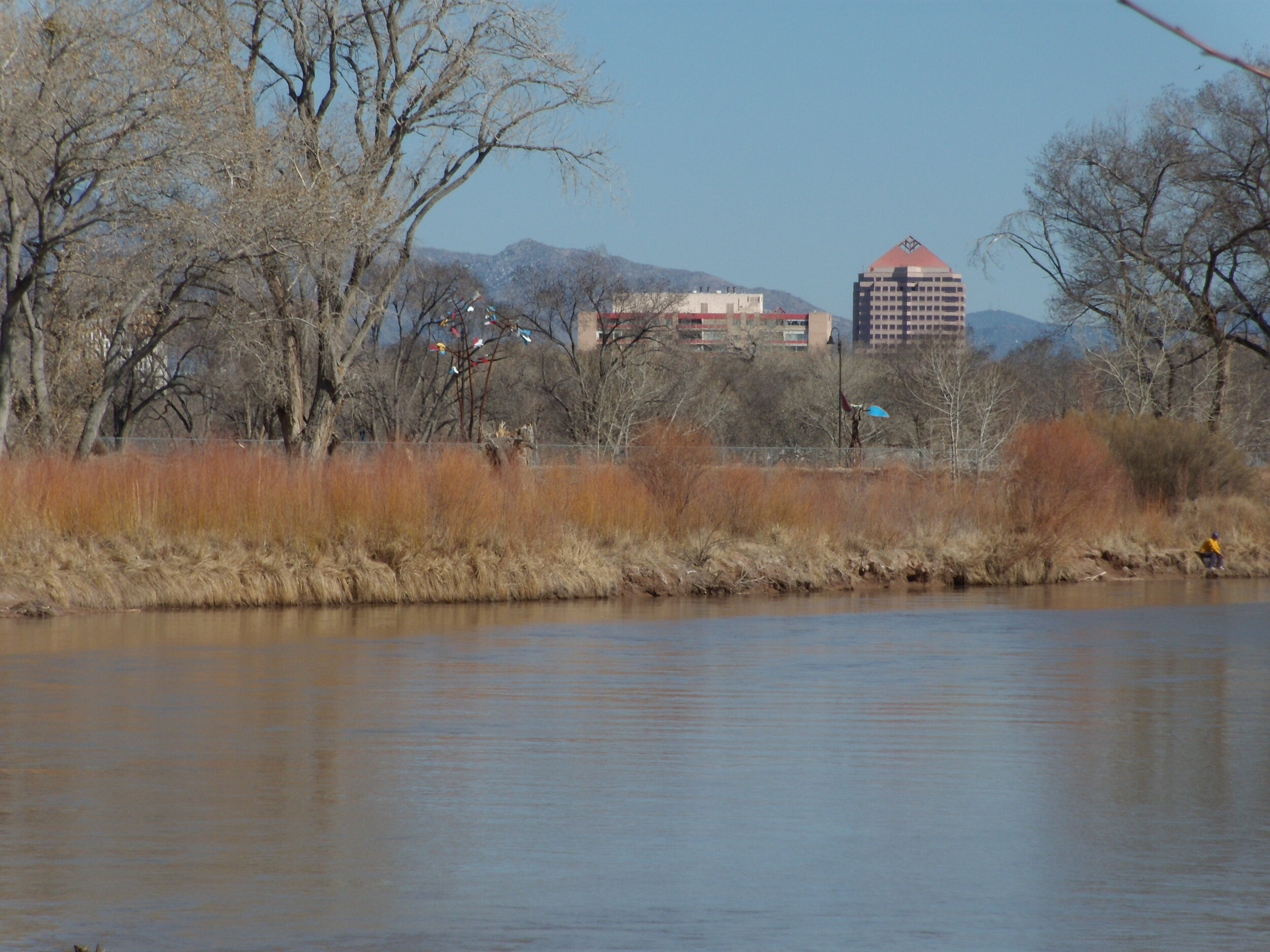 The Rio Grande Valley State Park was the fulfillment of Aldo Leopold's vision for a riparian reserve in Albuquerque, Downtown Albuquerque is in the background (photo by Brad Stebleton)