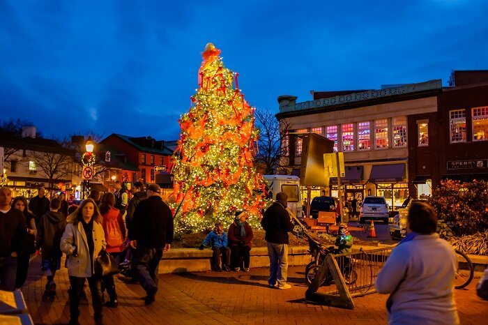 celebrate a magical christmas in annapolis and anne arundel county edible dc