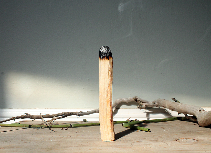What Are the Benefits of Burning Palo Santo? — ZOUZ Natural Incense Cones