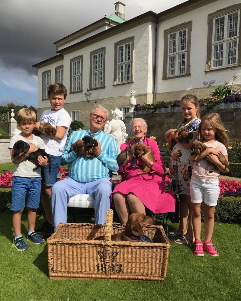 Eines der letzten gemeinsamen Fotos: Prinz Henrik und Königin Margrethe umringt von ihren Enkelkindern und den Welpen ihrer Dackelhündin.  ©Kongehuset