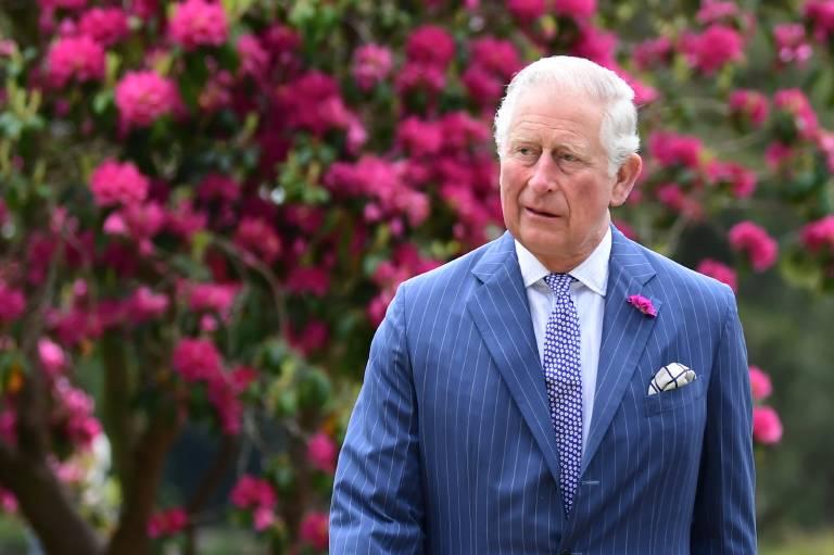 Prinz Charles trägt bei den Taufen seiner Enkelkinder stets diese Duftnelke im Knopfloch, denn diese hat eine besondere Bedeutung.  ©imago images / i Images