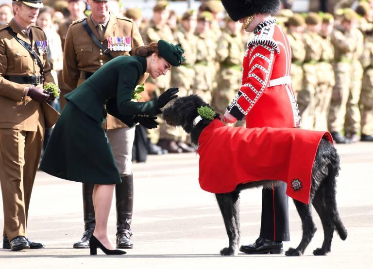 Auch Herzogin Kate streichelte den riesigen Wolfshund bereits.  ©imago images / PA Images