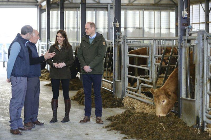 Herzogin Kate und Prinz William wurde das Gelände des Teagasc Animal Bioscience Research Centers in Meath vorgestellt. © picture alliance / AP Photo