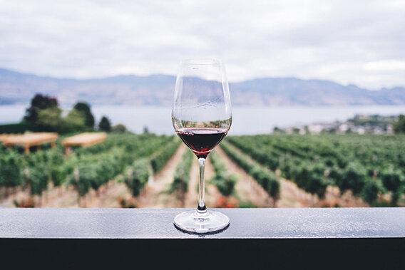 red-wine-glass-with-vineyard.jpeg