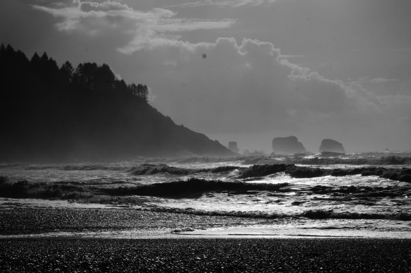 La Push, Olympic National Park. Fujifilm XH1, dirty sensor.